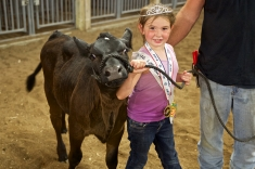 16-02 7/8 MO Fairs Vandailia & Lewistown