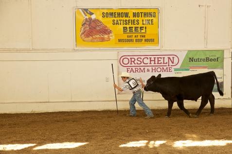 16-02 8/18 & 19 MO State Fair Sedalia